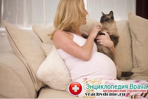 токсоплазмо беременных