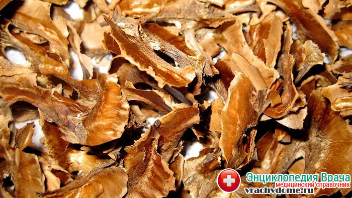 Средства из перегородок грецкого ореха применяют для лечения диффузного зоба