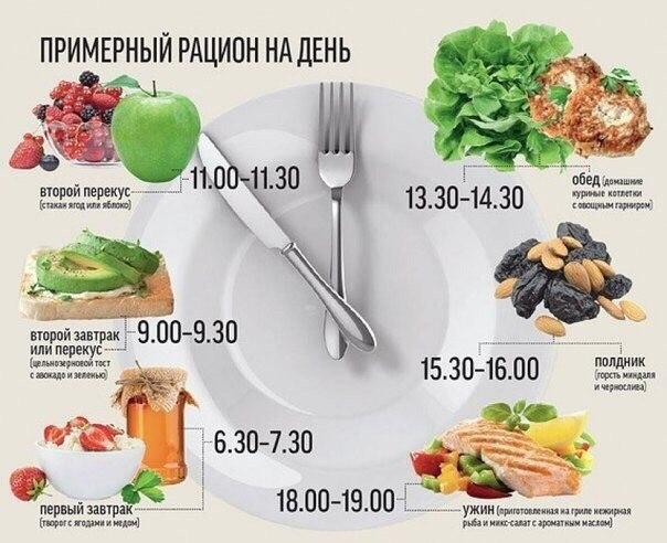 График питания